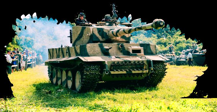 Tiger Replica